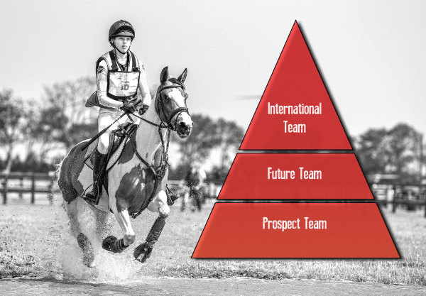 teamstructuur